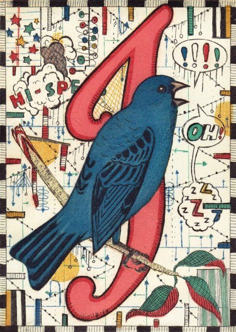 Alphabet of Songbirds - I